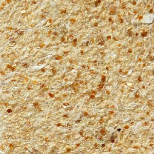 SILCOTEX Almond Chip SC 208